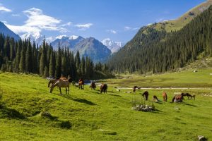 Family trips in Kyrgyzstan